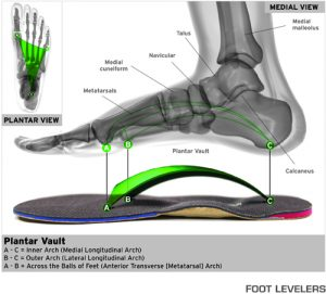 custom-orthotic-rockford